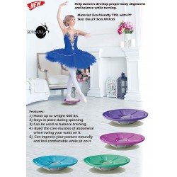 BARRE  TRAINING-Spin disc